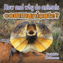 How and Why Do Animals Communicate - Animals Close-Up, Paperback / softback Book