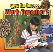 How Do Insects Work Together? - Insects Close-Up, Paperback / softback Book