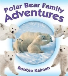 Polar Bear Family Adventures - Animal Family Adventures, Paperback / softback Book