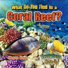 What Do You Find in a Coral Reef?, Paperback Book
