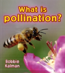 What is pollination?, Paperback / softback Book