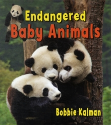 Endangered Baby Animals, Paperback / softback Book
