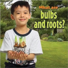 What are bulbs and roots? - Plants Close-Up, Paperback / softback Book