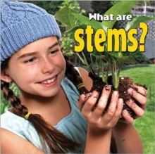 What are stems? - Plants Close-Up, Paperback / softback Book