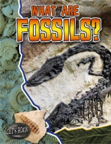 What Are Fossils? - Lets Rock, Paperback / softback Book