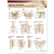 Lippincott Williams & Wilkins Atlas of Anatomy Skeletal System Chart: Head and Trunk, Wallchart Book