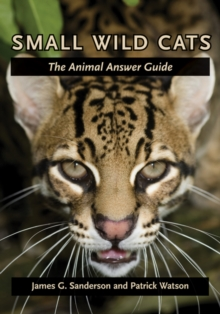 Small Wild Cats : The Animal Answer Guide, Hardback Book