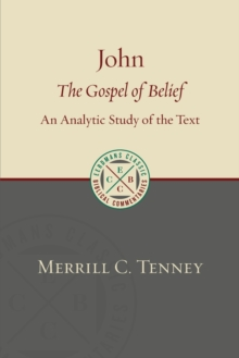 John : The Gospel of Belief: An Analytic Study of the Text, Paperback / softback Book