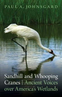 Sandhill and Whooping Cranes : Ancient Voices over America's Wetlands, Paperback / softback Book