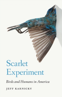 Scarlet Experiment : Birds and Humans in America, Hardback Book