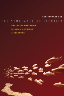 The Semblance of Identity : Aesthetic Mediation in Asian American Literature, Hardback Book