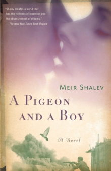 Pigeon and a Boy, Paperback / softback Book