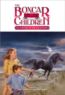 The Mystery of the Wild Ponies, Paperback / softback Book