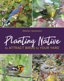 Planting Native to Attract Birds to Your Yard, Paperback / softback Book