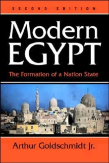 Modern Egypt : The Formation Of A Nation-state, Paperback / softback Book