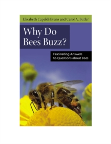Why do Bees Buzz? : Fascinating Answers to Questions About Bees, Paperback / softback Book