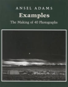 Examples: The Making Of 40 Photographs, Paperback / softback Book