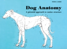Dog Anatomy : A Pictorial Approach to Canine Structure, Paperback Book