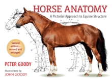 Horse Anatomy : A Pictorial Approach to Equine Structure, Paperback Book