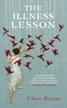 The Illness Lesson, Hardback Book