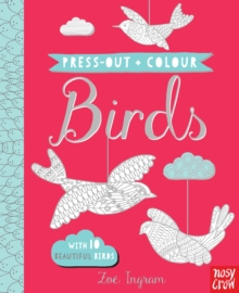 Press Out and Colour: Birds, Board book Book