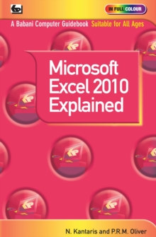 Microsoft Excel 2010 Explained, Paperback Book