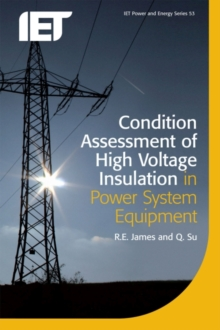 Condition Assessment of High Voltage Insulation in Power System Equipment, Paperback / softback Book