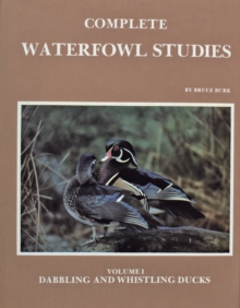 Complete Waterfowl Studies : Volume I: Dabbling Ducks and Whistling Ducks, Hardback Book