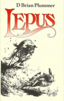 Lepus : The Story of a Hare, Hardback Book