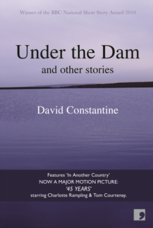 Under the Dam, Paperback / softback Book