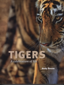 Tigers : A Celebration of Life, Hardback Book