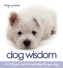 Dog Wisdom : To Lift Your Spirits and Brighten Your Day, Hardback Book