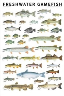 Freshwater Gamefish of North America Poster, Poster Book