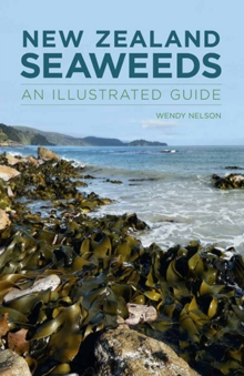 New Zealand Seaweeds: An Illustrated Guide, Paperback / softback Book