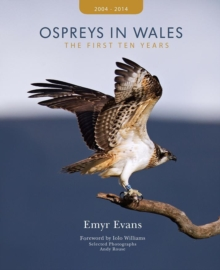 Ospreys in Wales - the First Ten Years, Hardback Book