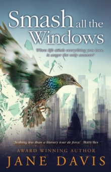 Smash all the Windows, Paperback Book