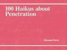100 Haikus About Penetration, Paperback / softback Book