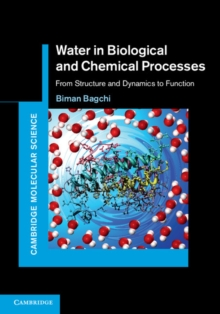 Water in Biological and Chemical Processes : From Structure and Dynamics to Function, Hardback Book