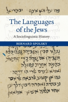 The Languages of the Jews : A Sociolinguistic History, Paperback / softback Book