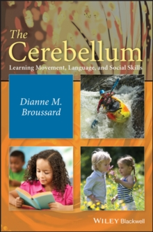 The Cerebellum : Learning Movement, Language, and Social Skills, Hardback Book