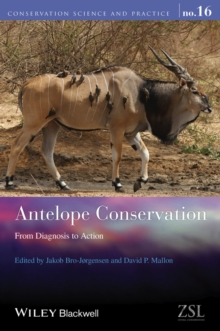 Antelope Conservation : From Diagnosis to Action, Paperback / softback Book