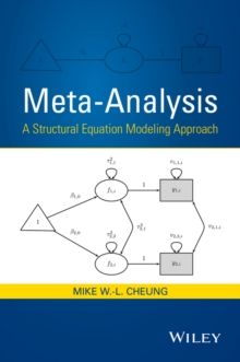 Meta-Analysis : A Structural Equation Modeling Approach, Hardback Book