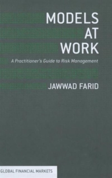 Models at Work : A Practitioners Guide to Risk Management, Hardback Book