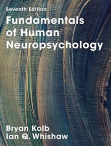 brain plasticity and behavior kolb bryan