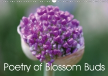 Poetry of Blossom Buds 2019 : Buds are the promise of a new beginning in nature, Calendar Book