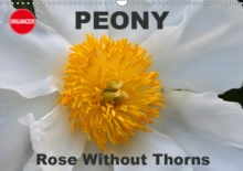 Peony Rose Without Thorns 2019 : Peony, a flower of symbolic importance, Calendar Book