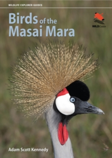 Birds of the Masai Mara, PDF eBook