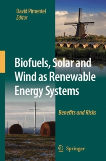 Biofuels, Solar and Wind as Renewable Energy Systems : Benefits and Risks, Hardback Book