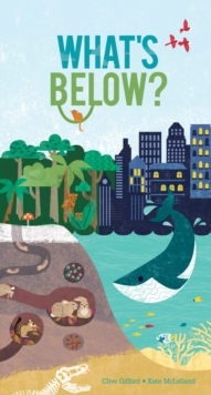What's Below?, Novelty book Book