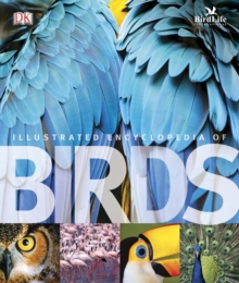 The Illustrated Encyclopedia of Birds, Hardback Book